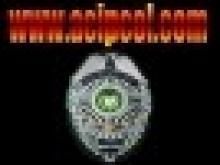 Agencia Central de Inteligencia Privada de Colombia