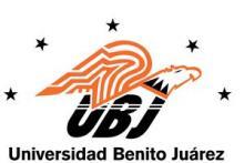 Universidad Benito Juárez
