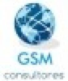 GSM Consultores