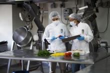 Ingeniería de Alimentos